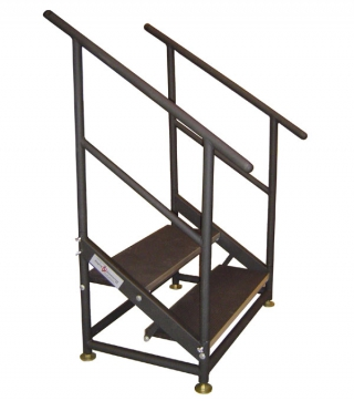 Custom 2 Step Fixed Height Stair Unit with Handrails