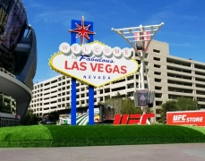 Las Vegas Sign - Front
